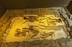 Squelettes dans le musée d'archéologie de Hatay Photographie stock libre de droits