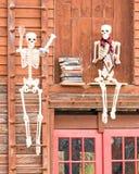 Squelettes et livres Photographie stock