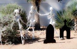 Squelettes hors du cabinet Photos libres de droits