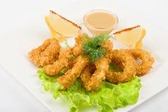 Squid Stock Photos