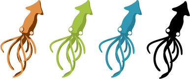 Squid. Cartoon  design element, over white, isolated Royalty Free Stock Images