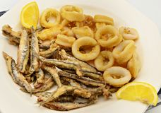 Squid with anchovies Stock Photos
