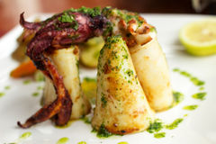 Squid from the Chief-Cooker. Royalty Free Stock Photography