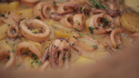 Squid cooked in a clay pot. Close up. dolly shot stock video