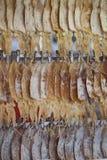 Squid dry in the market Stock Photos