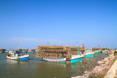 Squid fishing boats at the port Royalty Free Stock Image