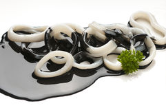 Squid in its ink. Image of delicious preparation of squid in its ink to apply to packaging design Stock Photography