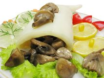 Squid meal with mushrooms Royalty Free Stock Image