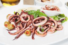 Squid rings Royalty Free Stock Photo