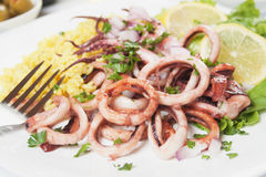 Squid rings. Fried squid rings served with rice, lemon and parsley Royalty Free Stock Photography