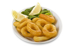 Squid rings. On the white Stock Photos