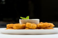 Squid rings fried in batter with white sauce on white plate on black background stock image