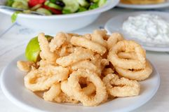 Squid rings. Portion of homemade squid rings Royalty Free Stock Image