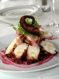 Squid salad. Grilled squid salad with onions Stock Images
