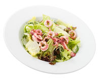 Squid Salad Plate Royalty Free Stock Photography