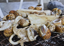 Squid and shellfish grill Stock Photography