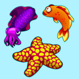 Squid, starfish and orange fish on blue background. Squid, starfish and tropical fish on blue background. Vector series of exotic fish characters Royalty Free Stock Photos