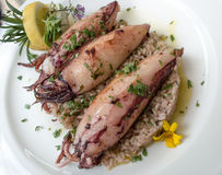 Squid stuffed with rice and lemon Royalty Free Stock Image