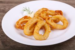 Squid Tempura. Hot crispy Squid tempura with garlic sauce royalty free stock images