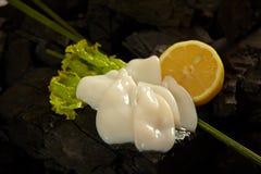 Squids mini Stock Image