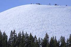 Squiggly alpine Spuren Stockfoto