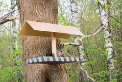 Squirrel и фидер на городе Forest Park, подавая дикие животные на городе Москвы Стоковое фото RF