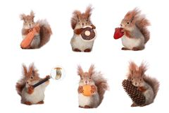 Free Squirrel Royalty Free Stock Images - 31701409