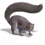 Squirrel 3D Render Royalty Free Stock Photo