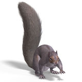 Squirrel 3D Render Stock Image