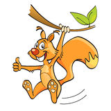Squirrel. Cartoon funny squirrel on the branch Royalty Free Stock Photography