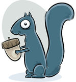 Squirrel with Acorn Stock Images