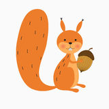 Squirrel with acorn. Happy squirrel with acorn on white background vector illustration