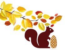 Squirrel with acorn under tree Stock Photo