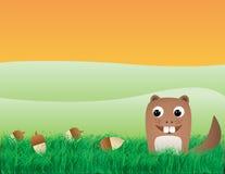 Squirrel with acorns Stock Photo