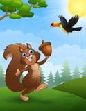 Squirrel and bird toucan cartoon in the jungle Stock Photos