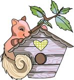 SQUIRREL ON BIRDHOUSE Stock Photos