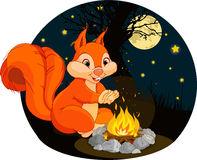 Squirrel campfire. Illustration of funny squirrel warms his hands near a campfire Stock Photos