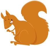 Squirrel cartoon animal character Stock Photography