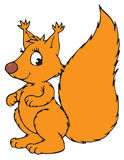 Squirrel Cartoon Character Royalty Free Stock Image