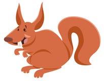 Squirrel cartoon character Royalty Free Stock Photos