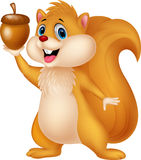 Squirrel cartoon with nut Stock Photos
