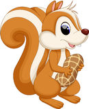 Squirrel cartoon with nut Stock Images