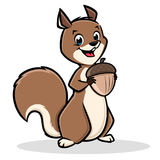 Squirrel Cartoon Stock Image