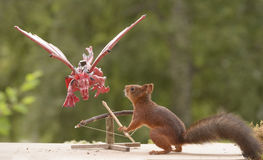 Squirrel and a  Catapult with dragon Royalty Free Stock Photography