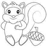 Squirrel coloring page Stock Images