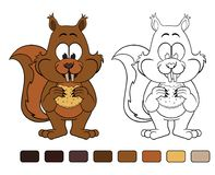 Squirrel with cookie. Coloring book royalty free illustration