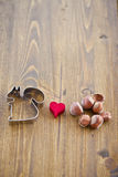 A squirrel cookie cutter loves hazelnuts Royalty Free Stock Image