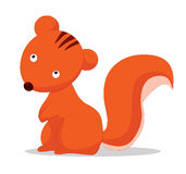 Squirrel so cute Royalty Free Stock Photos