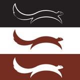 Squirrel design Stock Images