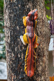 Squirrel doll on a tree Stock Photo
